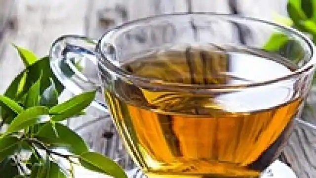 Not only obesity and diabetes, green tea is also effective in treating cancer