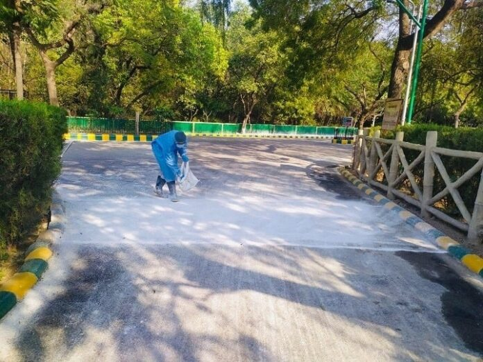 Delhi: Bird flu threat once again, closed for common citizens